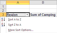 Tính năng hữu ích trong Excel 2010