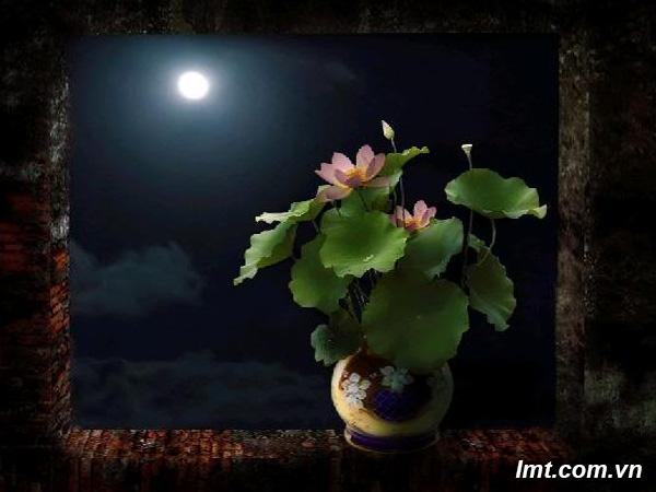 Tác phẩm ngắm trăng Photoshop Cs6 1