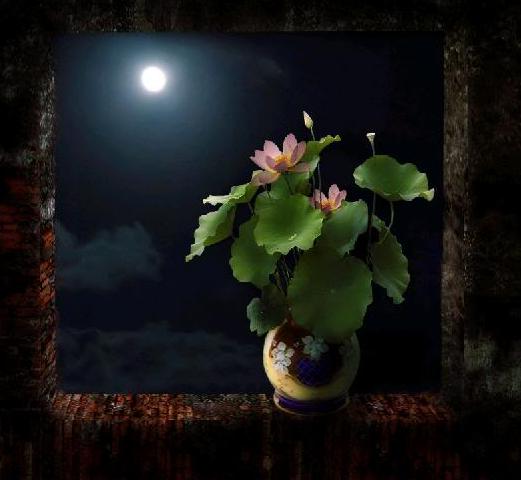 Tác phẩm ngắm trăng Photoshop Cs6