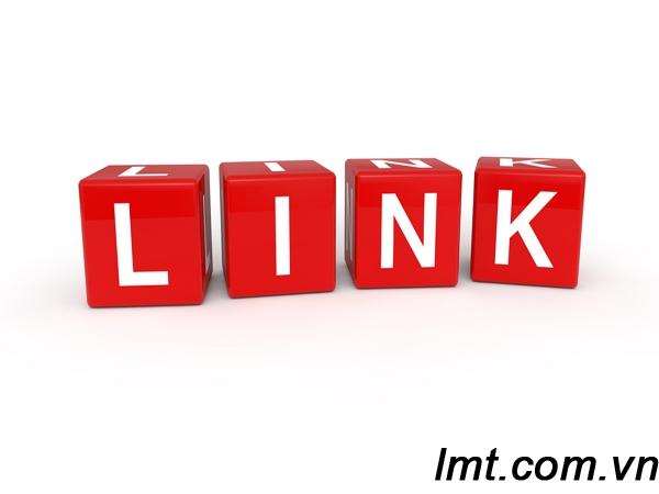 Cách thức phát hiện Passive Link trên website 1