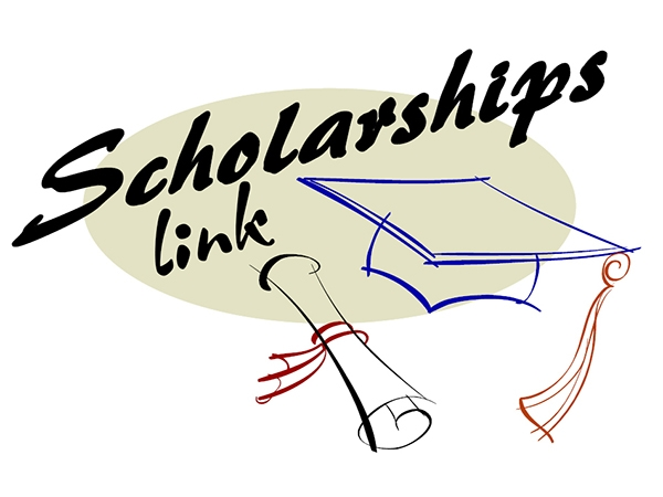 Link Scholarship là tự nhiên hay không tự nhiên theo Google? 4