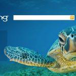 10 cách để tối ưu hóa một Website cho Bing 3