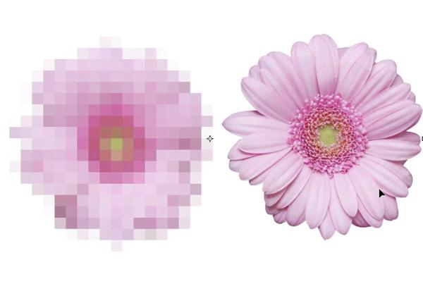10 điều bạn cần biết về Smart Objects trong Photoshop